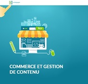 WhitePaper Thumb Commerce and content management FR