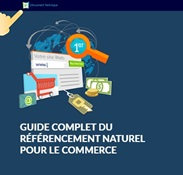 WhitePaper Thumb SEO for eCommerce FR